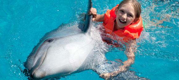 Dolfijnenzwemmen