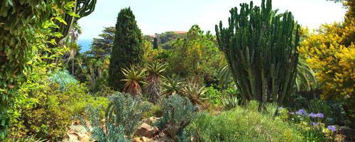botanische tuinen blanes